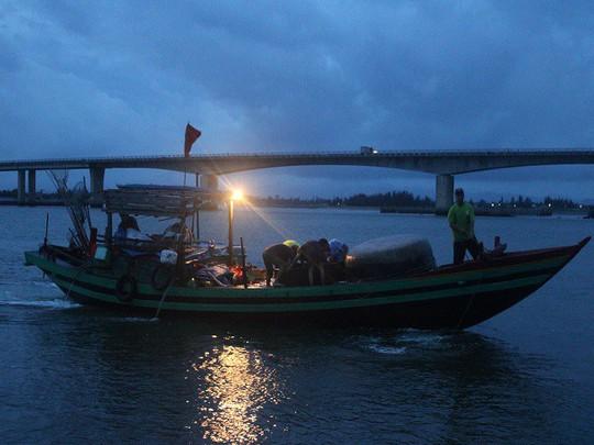 Mực, tôm, cá kéo về biển Cồn Gò lúc nửa đêm - Ảnh 2.