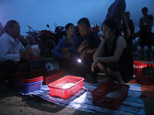Mực, tôm, cá kéo về biển Cồn Gò lúc nửa đêm - Ảnh 3.