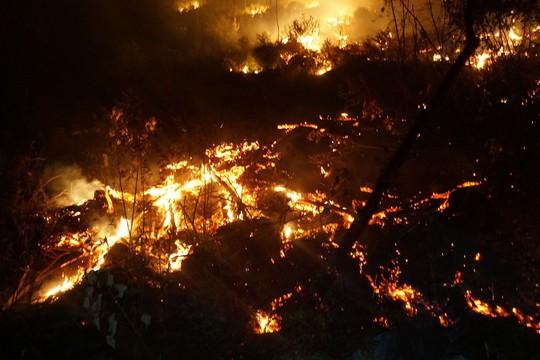 Phó Thủ tướng lý giải vì sao chưa dùng trực thăng chữa cháy rừng? - Ảnh 4.