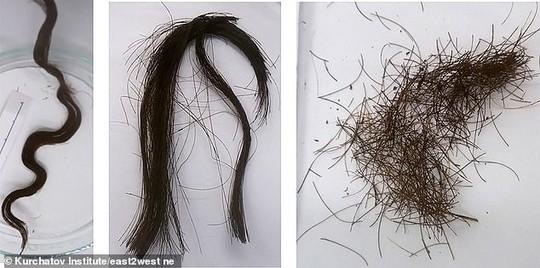 Bí ẩn mái tóc người đàn bà vẫn đen mượt dù đã chết 3.000 năm - Ảnh 2.