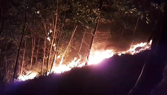 Đang cháy rừng ở Quảng Nam - Ảnh 2.