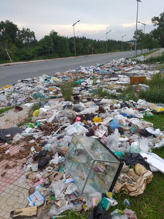 Bãi rác khủng - ảnh 1