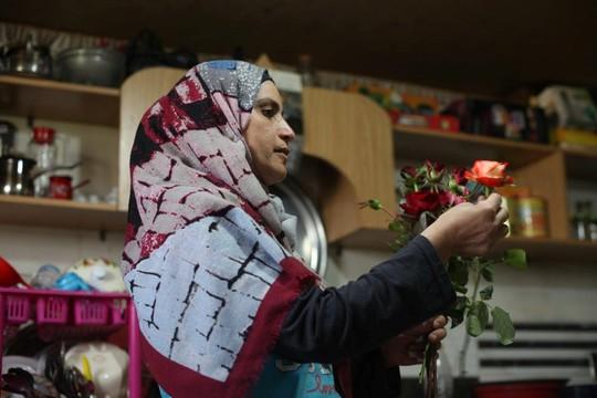 Người Syria hồi sinh bằng hạt giống vua của các loài hoa hồng - Ảnh 6.