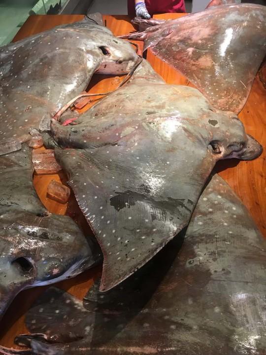 Ăn món cá không khoẻ ở Sài Gòn - Ảnh 1.