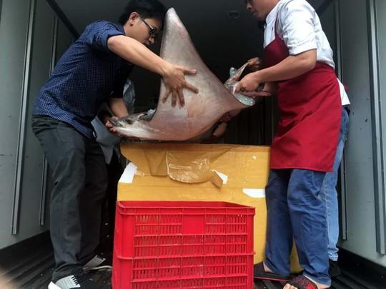 Ăn món cá không khoẻ ở Sài Gòn - Ảnh 4.