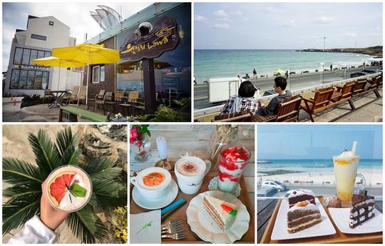 """4 quán café nhất định phải """"check-in sống ảo"""" khi đến Jeju – Hàn Quốc - Ảnh 7."""
