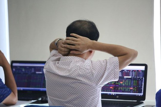 Nhà đầu tư chuyên nghiệp cũng thua thị trường - Ảnh 1.