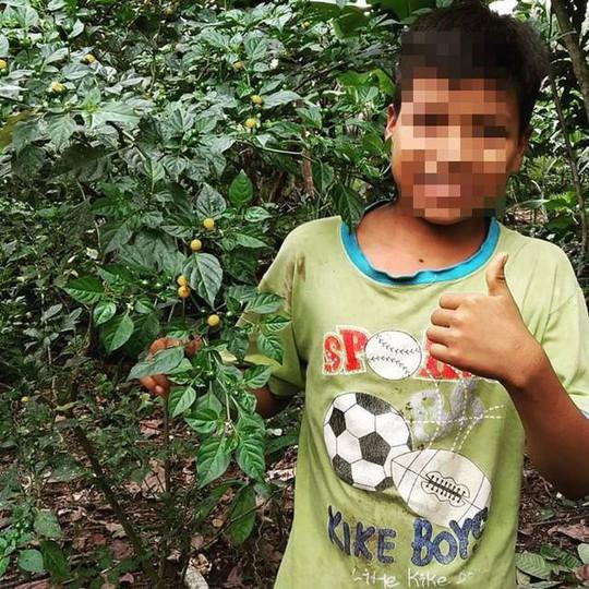 Ớt Aji Charapita mọc hoang dại nhưng có giá hơn nửa tỉ đồng/kg - Ảnh 8.