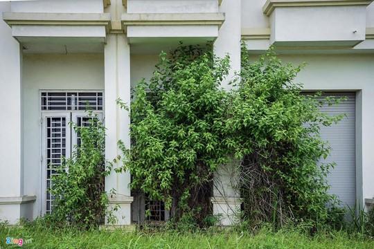 Hàng trăm căn biệt thự hiện đại kiểu Pháp bị bỏ hoang 12 năm - Ảnh 8.