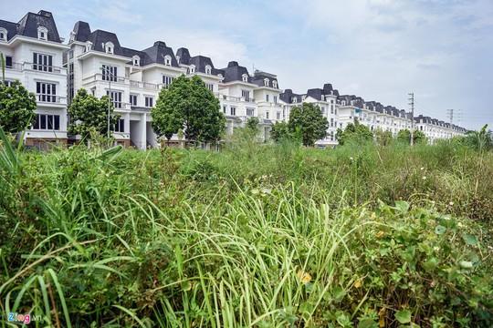 Hàng trăm căn biệt thự hiện đại kiểu Pháp bị bỏ hoang 12 năm - Ảnh 10.