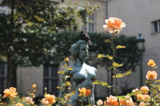 Người khỏa thân ở công viên Paris phàn nàn vì bị quấy rối - Ảnh 2.