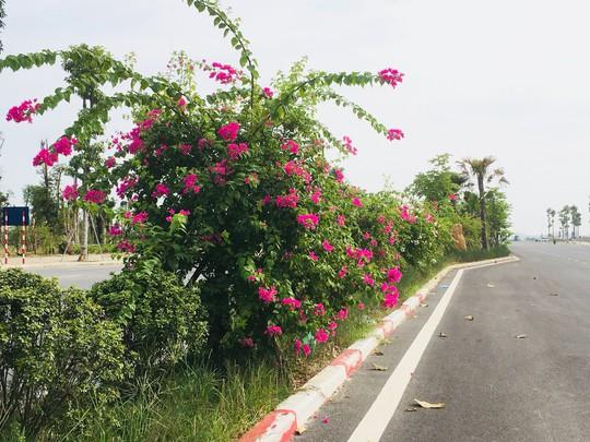 Khu đô thị Thanh Hà đã hoàn thiện đến 90% cơ sở hạ tầng phục vụ người dân - Ảnh 5.
