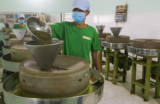 Trồng rau má nghiền lấy bột thu 4 tỉ đồng mỗi năm ở Củ Chi - Ảnh 8.