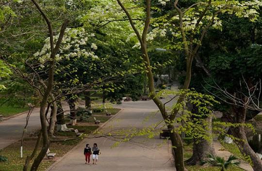 Top 3 công viên giải nhiệt mùa hè tại Hà Nội - Ảnh 3.