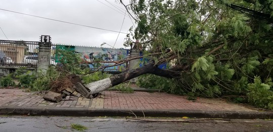 Cận cảnh nơi bão số 2 vừa quét qua - Ảnh 3.
