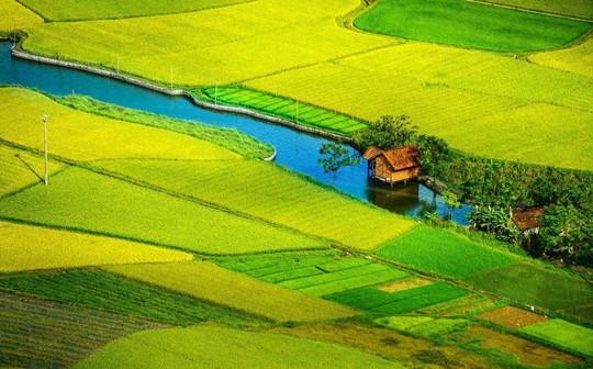Phong cảnh, con người khắp 3 miền đất Việt đẹp sững sờ qua ảnh - Ảnh 2.