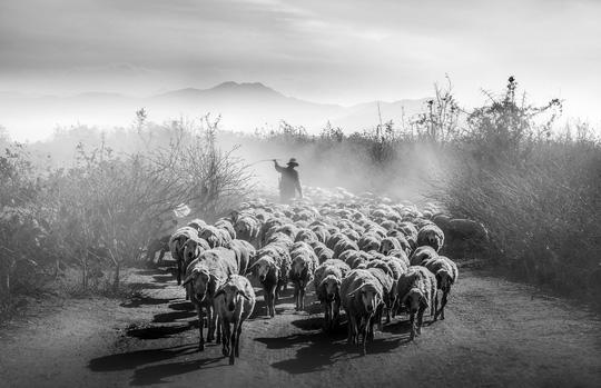 Phong cảnh, con người khắp 3 miền đất Việt đẹp sững sờ qua ảnh - Ảnh 19.