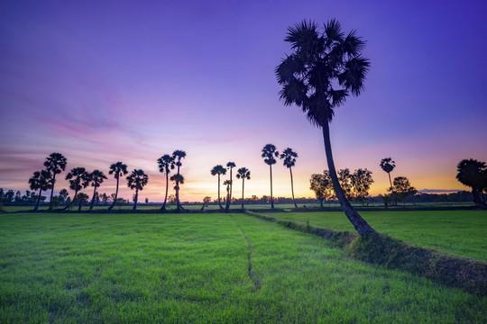 Phong cảnh, con người khắp 3 miền đất Việt đẹp sững sờ qua ảnh - Ảnh 29.