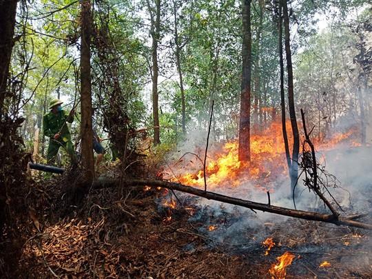 Hà Tĩnh lại xảy ra cháy rừng, hàng trăm người dập lửa dưới trời nắng nóng - Ảnh 2.