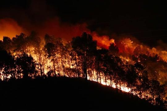 Rừng tại Hà Tĩnh cháy đỏ trời trong đêm, nhiều hộ dân phải sơ tán khẩn cấp - Ảnh 1.
