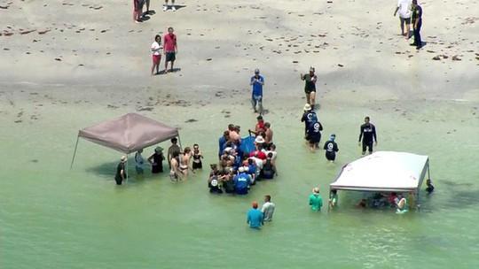 Dựng lều trên mặt biển giải cứu cá voi mắc cạn - Ảnh 2.