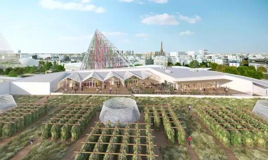 Độc đáo nông trại sân thượng lớn nhất thế giới - Ảnh 1.