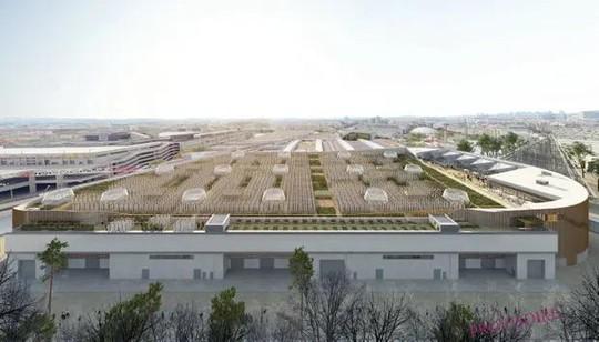 Độc đáo nông trại sân thượng lớn nhất thế giới - Ảnh 2.
