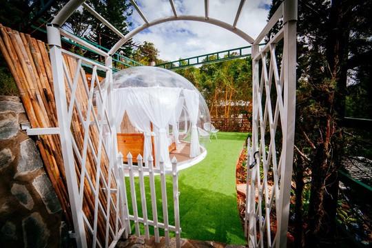 Khách sạn bong bóng trong suốt đẹp tựa Bali vừa xuất hiện ở Đà Lạt - Ảnh 3.