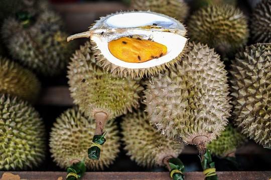 5 điều ít biết về vua trái cây sầu riêng - Ảnh 1.