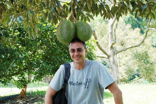 5 điều ít biết về vua trái cây sầu riêng - Ảnh 6.