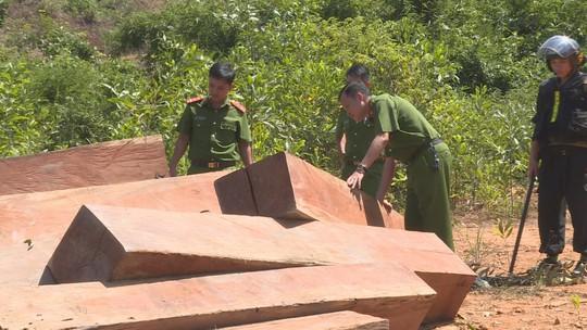 Điều công an khác địa bàn đi triệt phá đường dây khai thác gỗ lậu cực lớn - Ảnh 8.