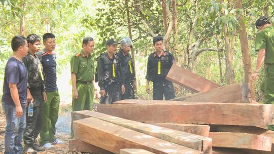 Điều công an khác địa bàn đi triệt phá đường dây khai thác gỗ lậu cực lớn - Ảnh 7.