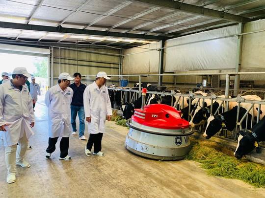OIE tham gia đánh giá và công nhận vùng chăn nuôi bò sữa an toàn dịch bệnh - Ảnh 2.