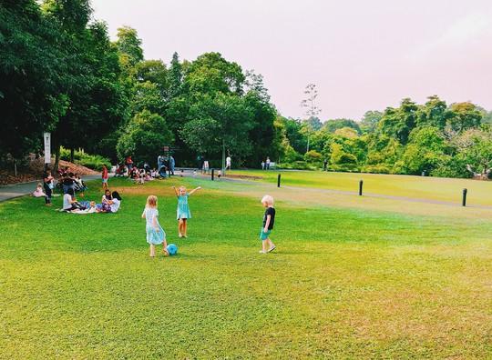 Từ mưa trong nhà đến nấc thang lên thiên đường, ra mà xem Singapore ngát xanh này! - Ảnh 10.