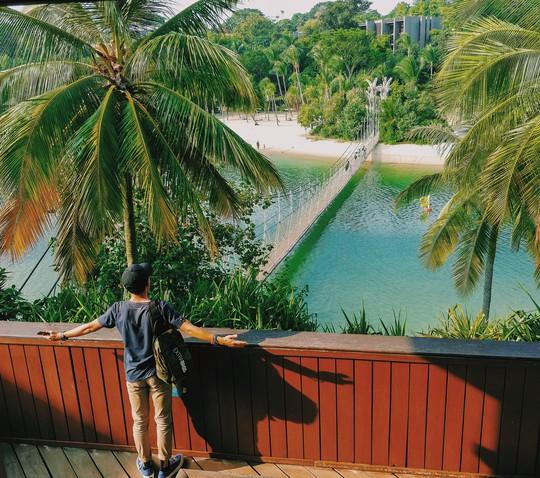 Từ mưa trong nhà đến nấc thang lên thiên đường, ra mà xem Singapore ngát xanh này! - Ảnh 13.
