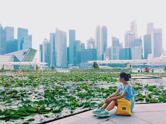 Từ mưa trong nhà đến nấc thang lên thiên đường, ra mà xem Singapore ngát xanh này! - Ảnh 1.