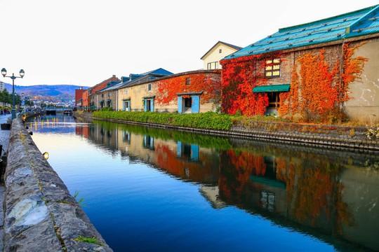 Hokkaido - vùng đất đón mùa thu sớm nhất Nhật Bản - Ảnh 3.