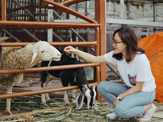 Trại bò sữa check-in tuyệt đẹp ở Mộc Châu thu hút giới trẻ - Ảnh 11.