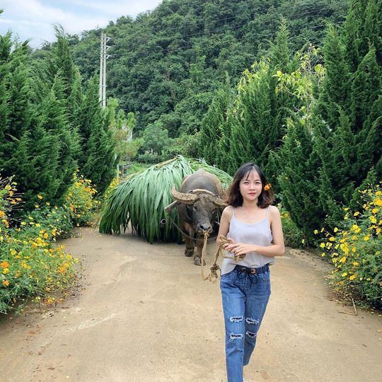 Trại bò sữa check-in tuyệt đẹp ở Mộc Châu thu hút giới trẻ - Ảnh 10.