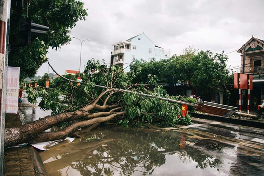 Nghệ An, Hà Tĩnh cảnh báo lốc xoáy, lũ quét và sạt lở đất sau bão số 4 - Ảnh 1.