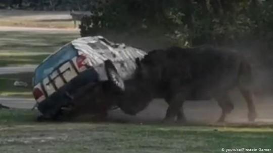 Tê giác tức giận hất tung xe hơi 3 lần ở Đức - Ảnh 3.