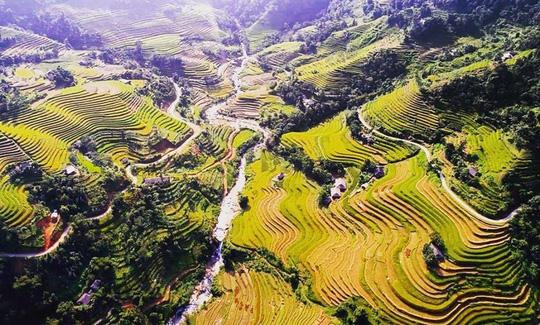 7 cung đường lúa chín ngoạn mục để săn ảnh mùa vàng - Ảnh 8.