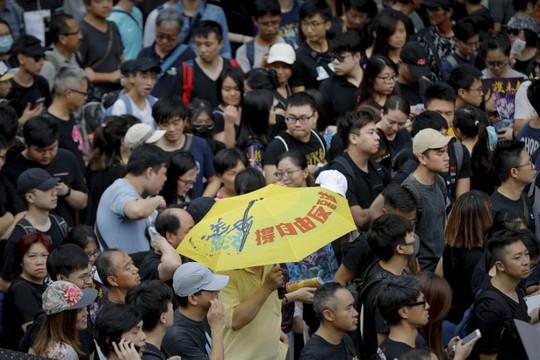 Hồng Kông: Cảnh sát và người biểu tình chơi mèo vờn chuột - Ảnh 2.