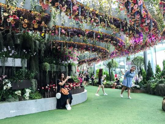 Khu vườn cổ tích với 15.000 bông hoa treo ngược - Ảnh 2.