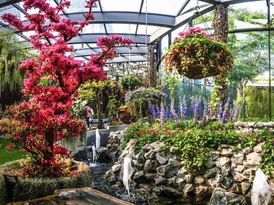 Khu vườn cổ tích với 15.000 bông hoa treo ngược - Ảnh 5.