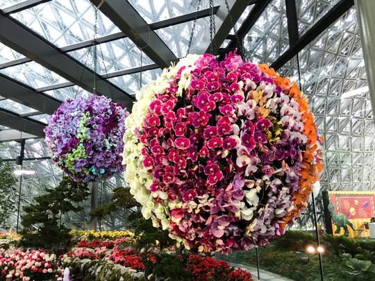 Khu vườn cổ tích với 15.000 bông hoa treo ngược - Ảnh 6.