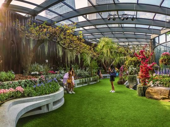Khu vườn cổ tích với 15.000 bông hoa treo ngược - Ảnh 9.