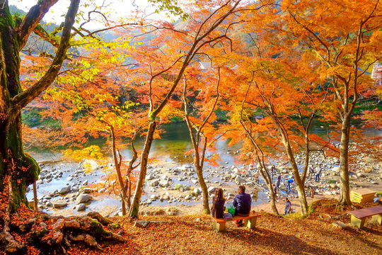 """Đi trọn thế gian, Thu vàng hẹn ước"""": Tận hưởng niềm vui du lịch mùa thu - Ảnh 5."""