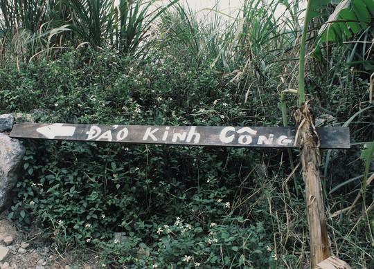 Phim trường Kong ở Tràng An chỉ còn trong ký ức - Ảnh 2.
