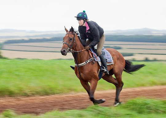 Edie Campbell tái xuất sau tai nạn ngã ngựa nghiêm trọng - Ảnh 2.